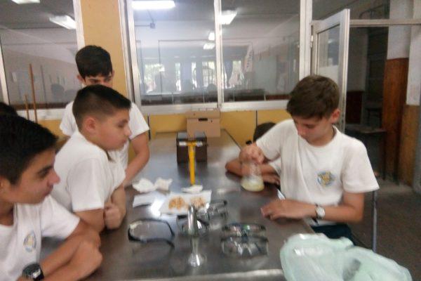 20191113 Actividad de laboratorio de Biología thumbnail_IMG_20191111_113137